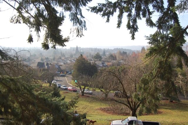 The views were breathtaking.