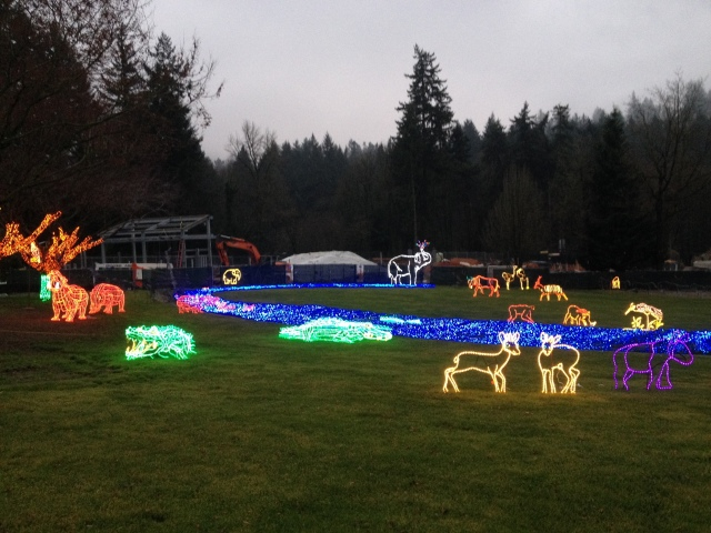 Some of the lights as dusk fell. Susan has asked Phil for one of the lit-up crocodiles for their front lawn next year...