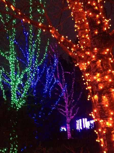 Christmas lights everywhere!