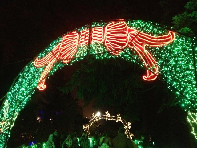 A Christmas wreath arch