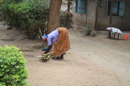 A woman from Tengeru bundling sugar cane for market
